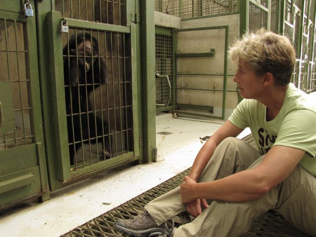 Bornean Sun Bear Conservation Centre Emma Thomson in the bear house