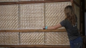 Arkitrek Intern, Anna Nicholls, puts the last bamboo weave panel in place. At Mantanani CLC