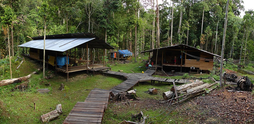 Tampoi Basecamp at Imbak Canyon Conservation Area