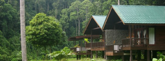 Borneo Rainforest Lodge twin deluxe chalet